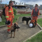 Members of the CASDDA team and their trained dogs